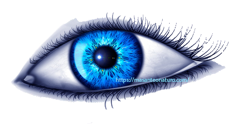 Bilan prévention santé iridologie à Aix-en-Provence, le 20.02.2019