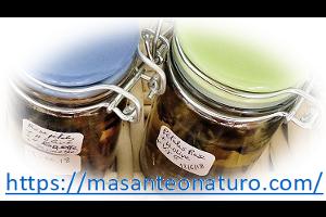 plantes-utiles-naturopathie